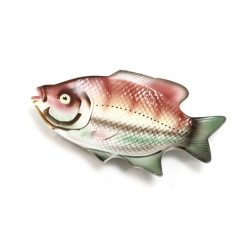 colourful-carp-plate-2